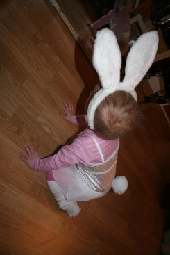 Hopp hopp! En liten søt kanin :-)