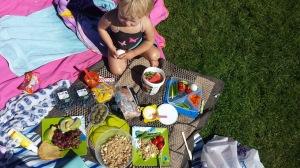 Piknikjente2
